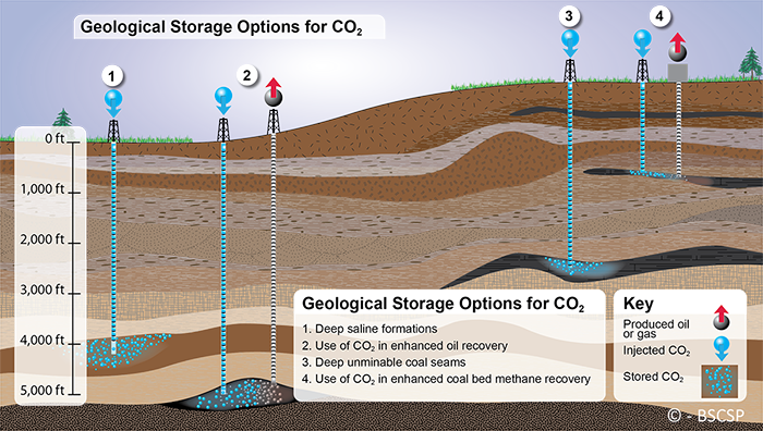 There are a variety of geologic CCS options including saline formations, depleted oil reservoirs, unminable coal seams, and for enhanced oil recovery.